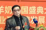 2013羊奶盛典大会—陕西省乳制品工业协会副会长杨林伟发言